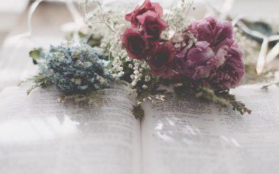 B4115 The Books of Poetry & Wisdom (Modular)