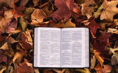 B111 Old Testament Literature (Semester)