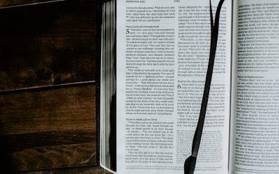B4215 Romans and Galatians (Intensive)