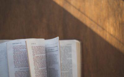 B121 New Testament Literature (Semester)